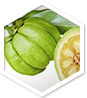 Garcinia MD ingredient 1